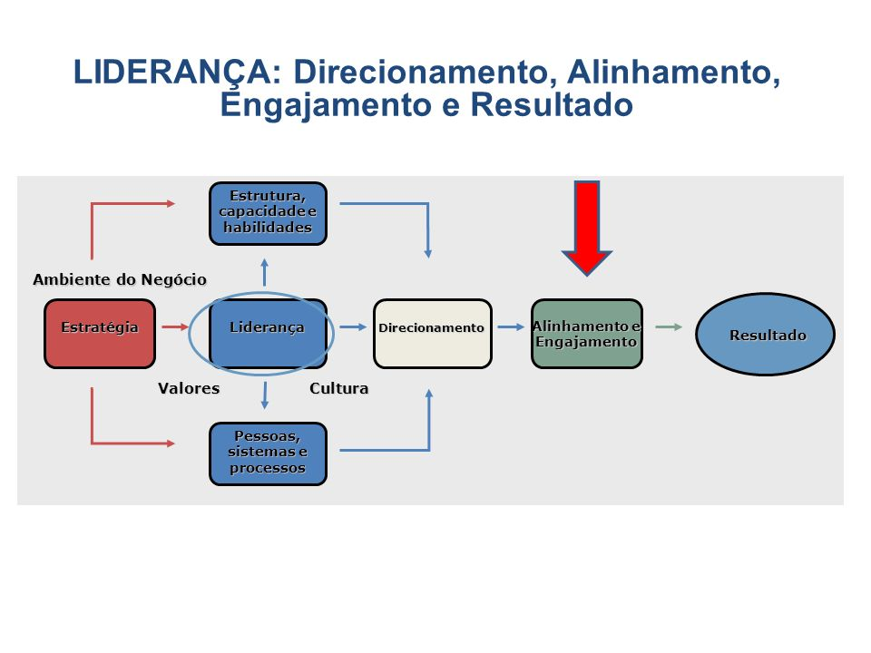 LIDERANÇA: Direcionamento, Alinhamento, Engajamento e Resultado