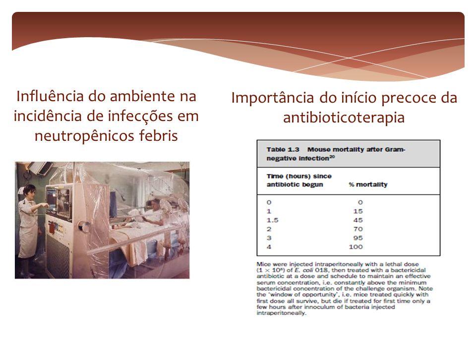 Importância do início precoce da antibioticoterapia
