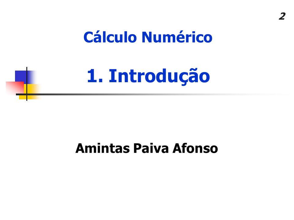 Cálculo Numérico 1. Introdução Amintas Paiva Afonso