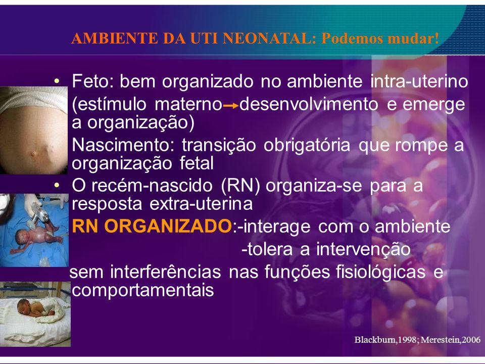 Feto: bem organizado no ambiente intra-uterino