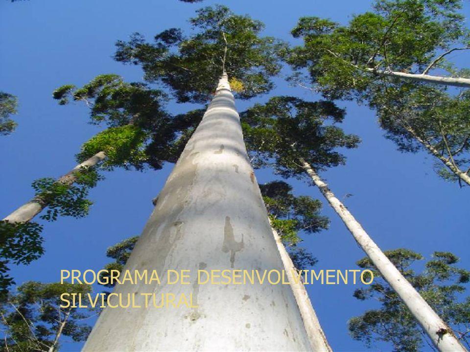 PROGRAMA DE DESENVOLVIMENTO SILVICULTURAL