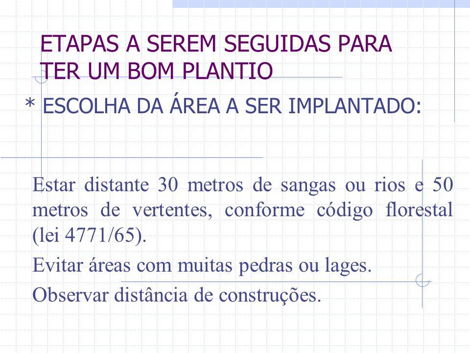 ETAPAS A SEREM SEGUIDAS PARA TER UM BOM PLANTIO
