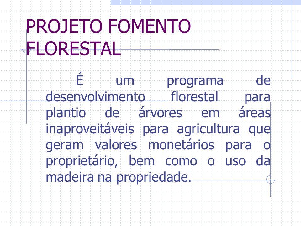 PROJETO FOMENTO FLORESTAL