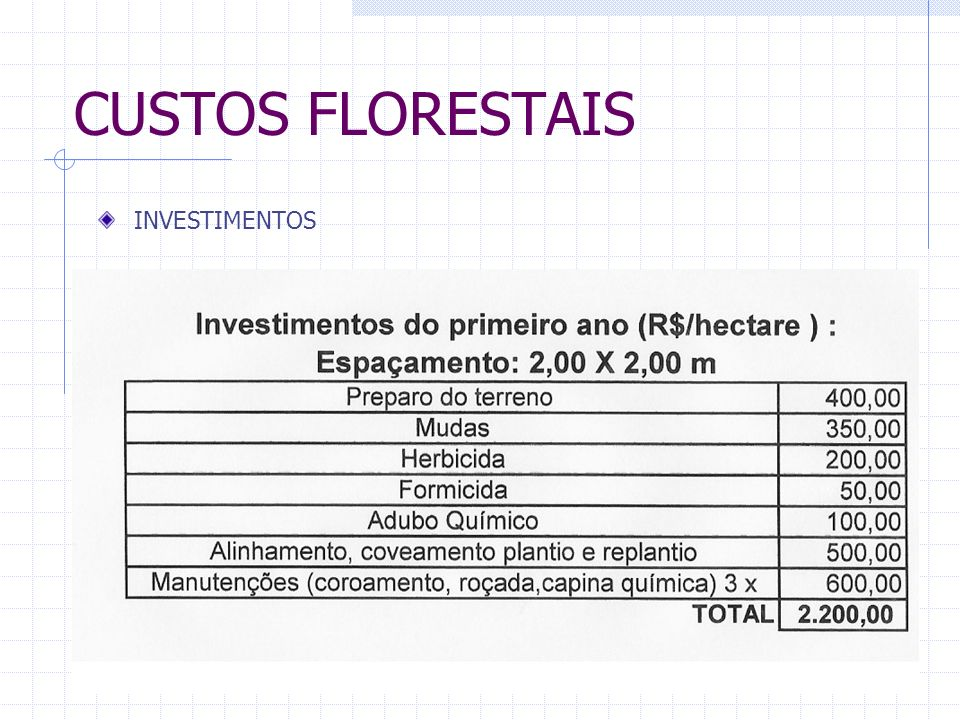 CUSTOS FLORESTAIS INVESTIMENTOS