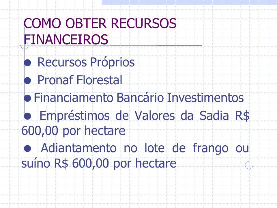 COMO OBTER RECURSOS FINANCEIROS