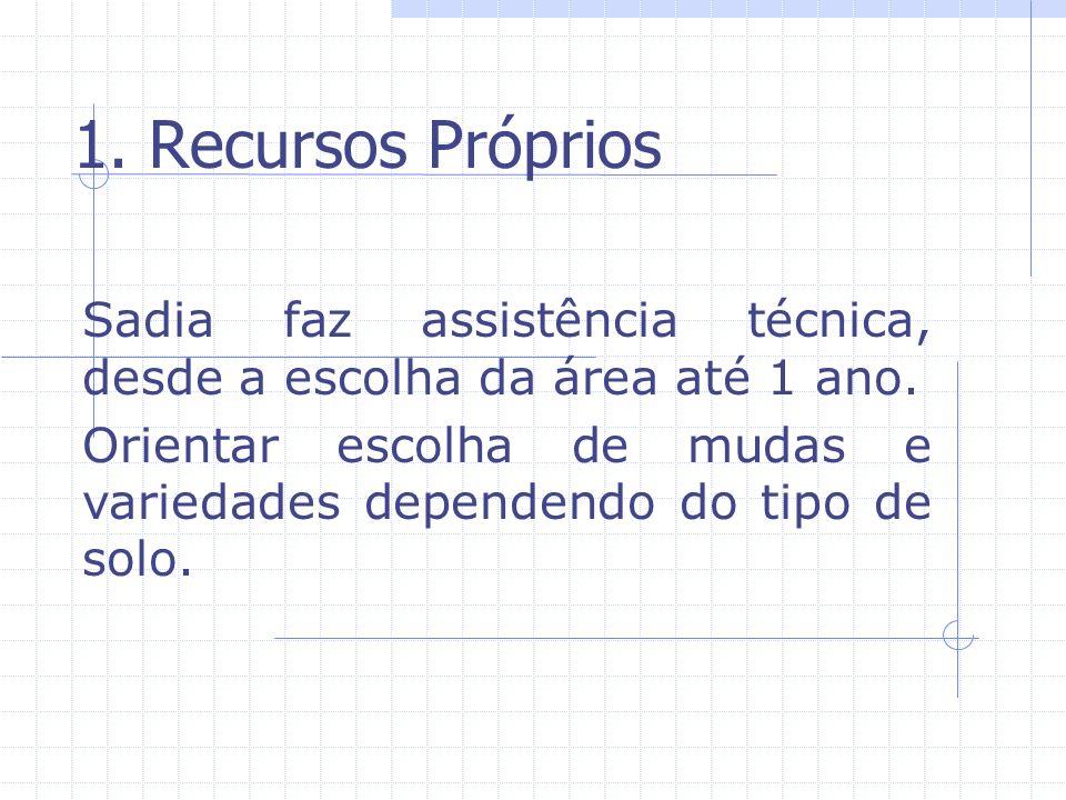 1. Recursos Próprios Sadia faz assistência técnica, desde a escolha da área até 1 ano.