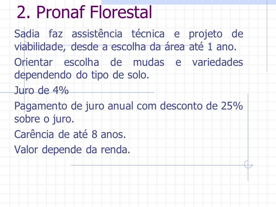 2. Pronaf Florestal Sadia faz assistência técnica e projeto de viabilidade, desde a escolha da área até 1 ano.