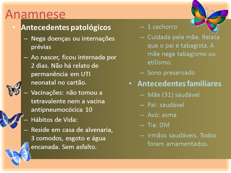 Anamnese Antecedentes patológicos Antecedentes familiares 1 cachorro