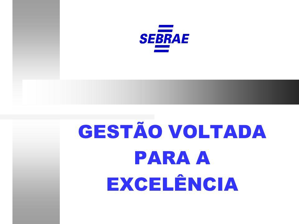 GESTÃO VOLTADA PARA A EXCELÊNCIA