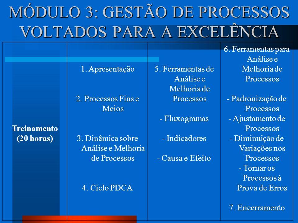 MÓDULO 3: GESTÃO DE PROCESSOS VOLTADOS PARA A EXCELÊNCIA