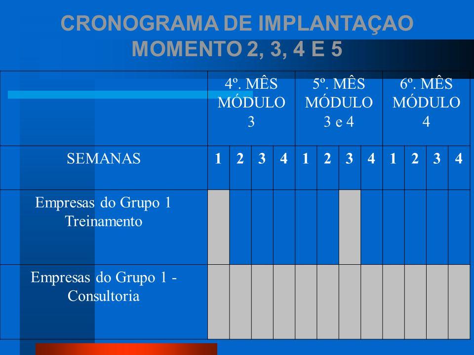 CRONOGRAMA DE IMPLANTAÇAO