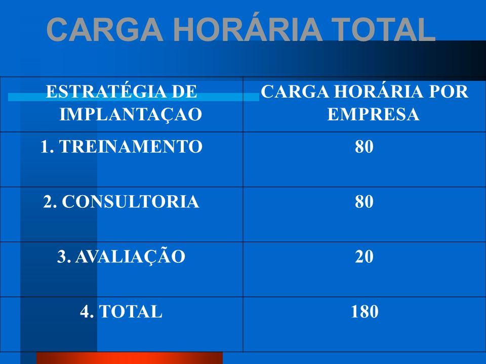 ESTRATÉGIA DE IMPLANTAÇAO CARGA HORÁRIA POR EMPRESA