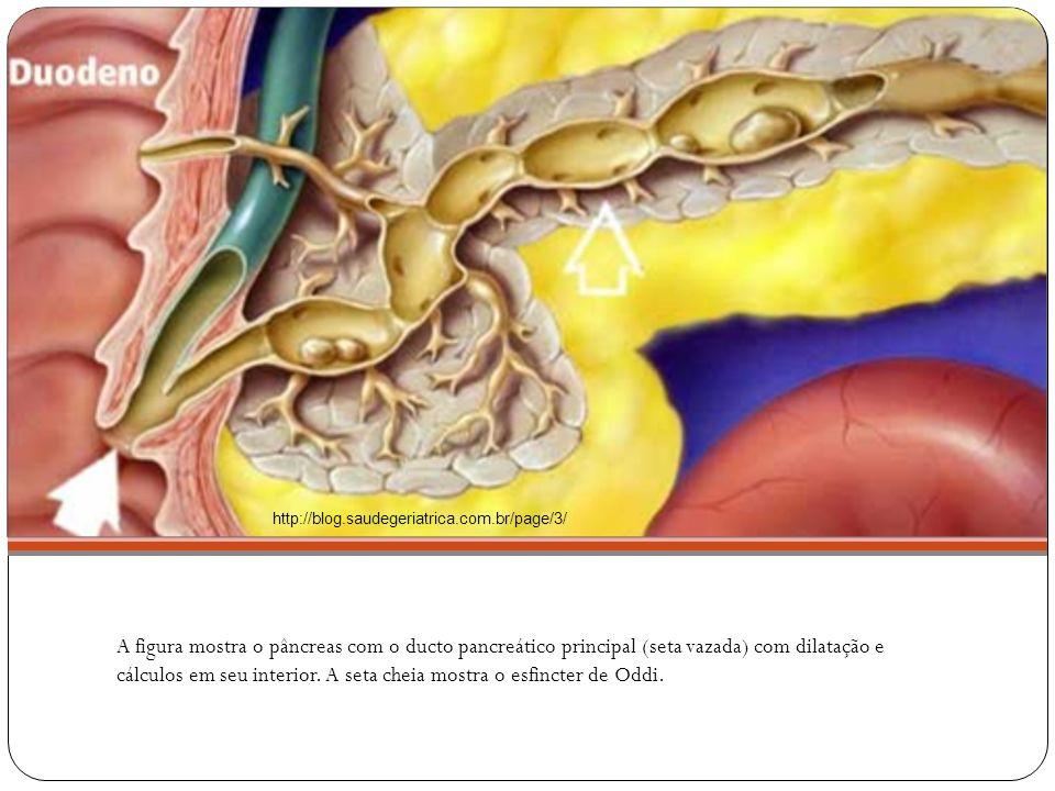 http://blog.saudegeriatrica.com.br/page/3/