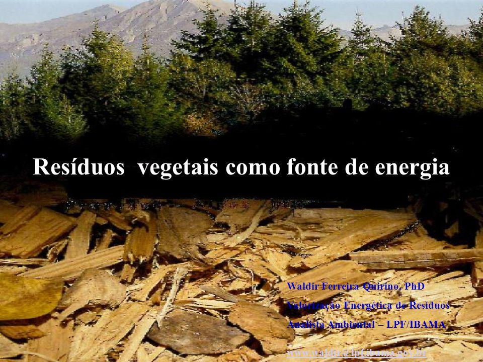 Resíduos vegetais como fonte de energia