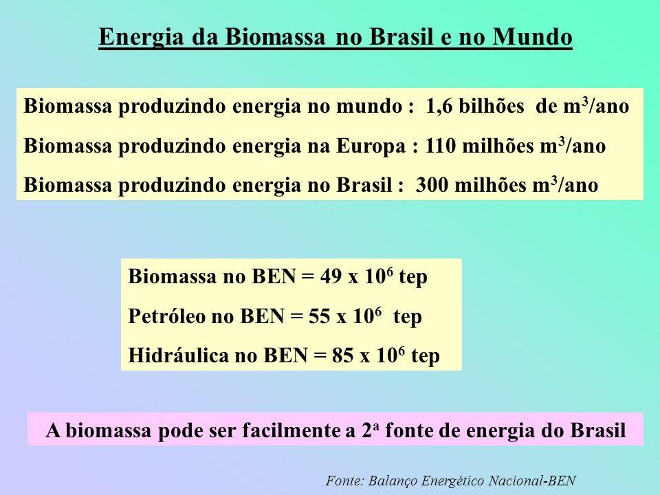 Energia da Biomassa no Brasil e no Mundo