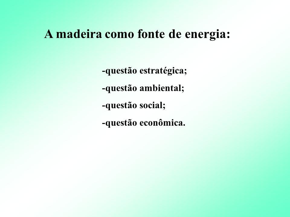 A madeira como fonte de energia: