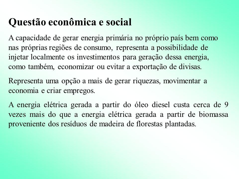 Questão econômica e social
