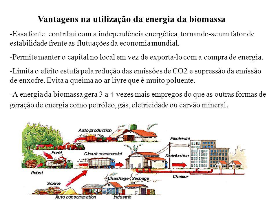 Vantagens na utilização da energia da biomassa