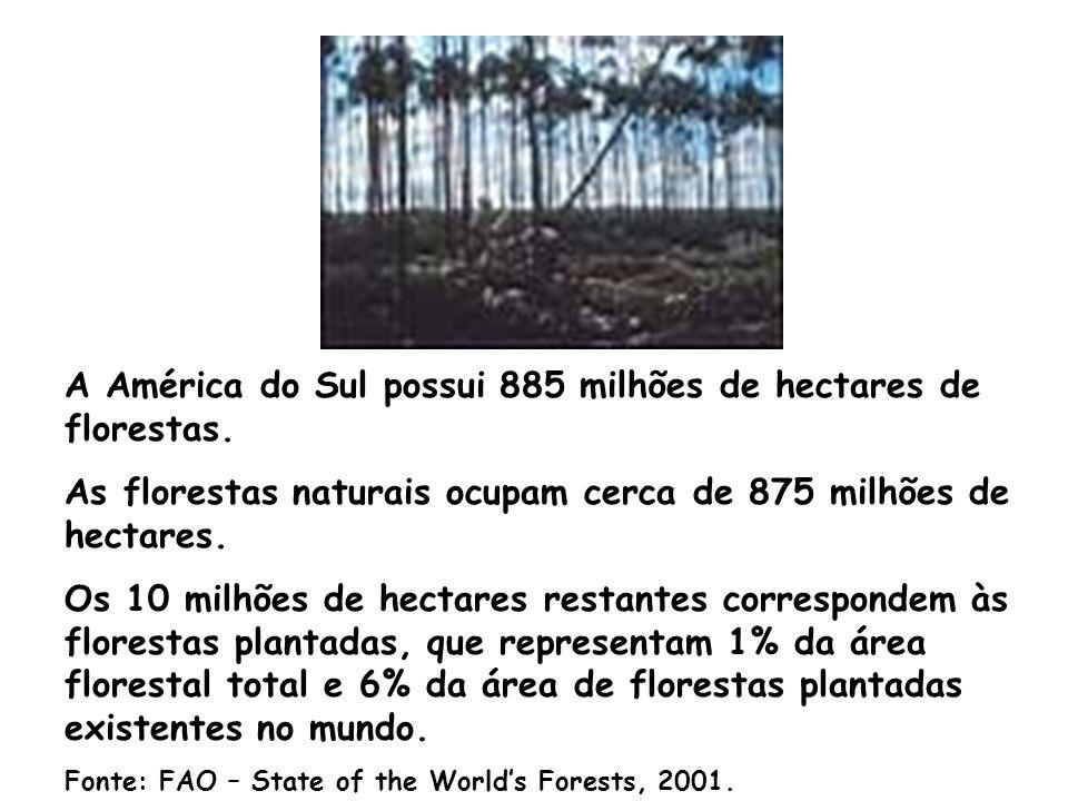 A América do Sul possui 885 milhões de hectares de florestas.