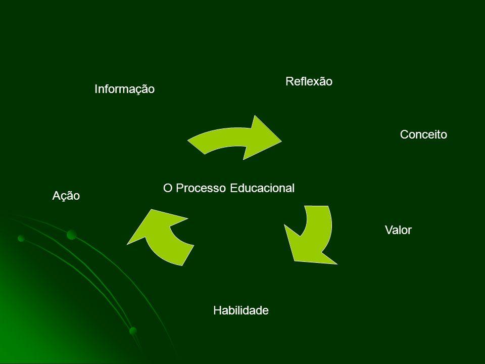 Reflexão Informação Conceito O Processo Educacional Ação Valor Habilidade