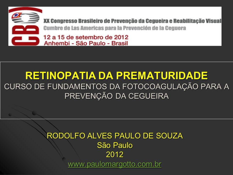 RODOLFO ALVES PAULO DE SOUZA São Paulo 2012 www.paulomargotto.com.br