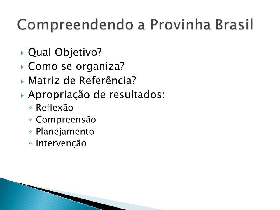 Compreendendo a Provinha Brasil