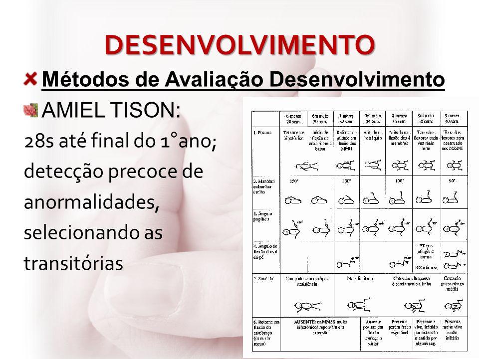 DESENVOLVIMENTO Métodos de Avaliação Desenvolvimento AMIEL TISON: