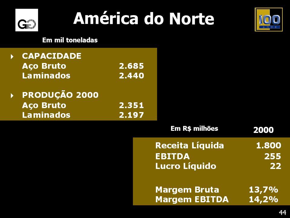 América do Norte Em mil toneladas Em R$ milhões 2000 44