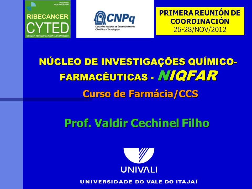 Prof. Valdir Cechinel Filho