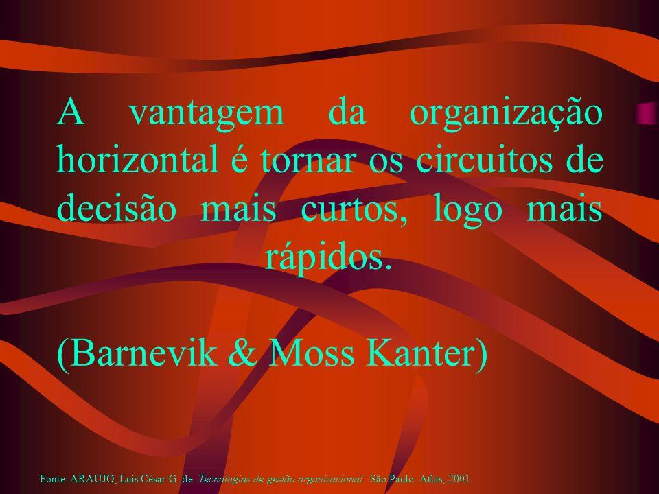 A vantagem da organização horizontal é tornar os circuitos de decisão mais curtos, logo mais rápidos. (Barnevik & Moss Kanter)