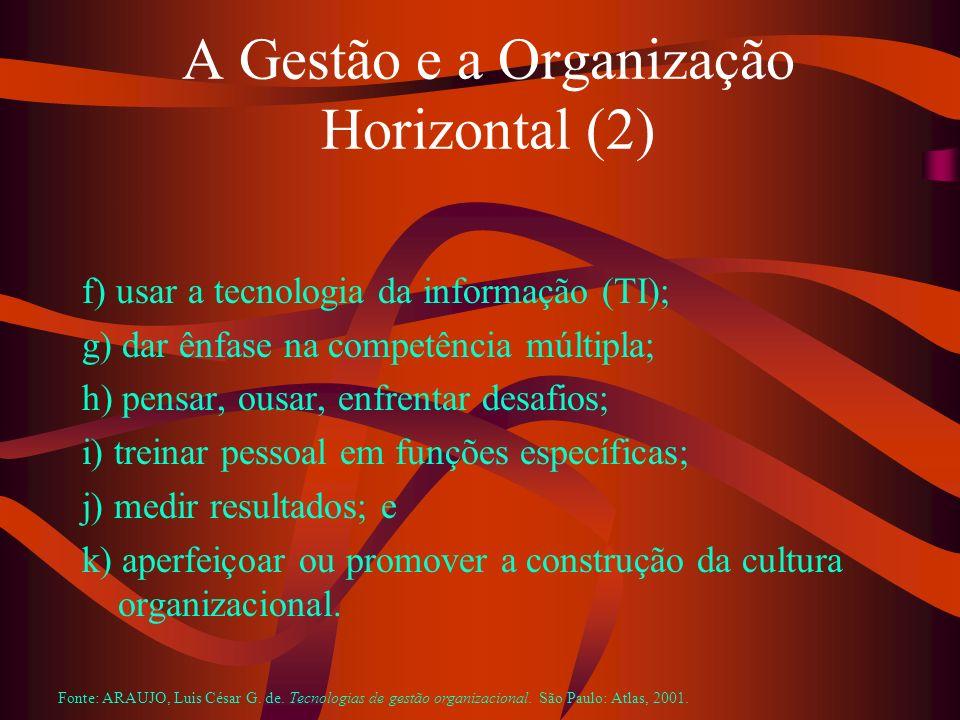 A Gestão e a Organização Horizontal (2)
