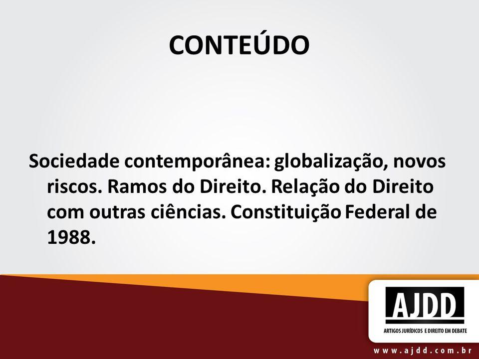 CONTEÚDO Sociedade contemporânea: globalização, novos riscos.