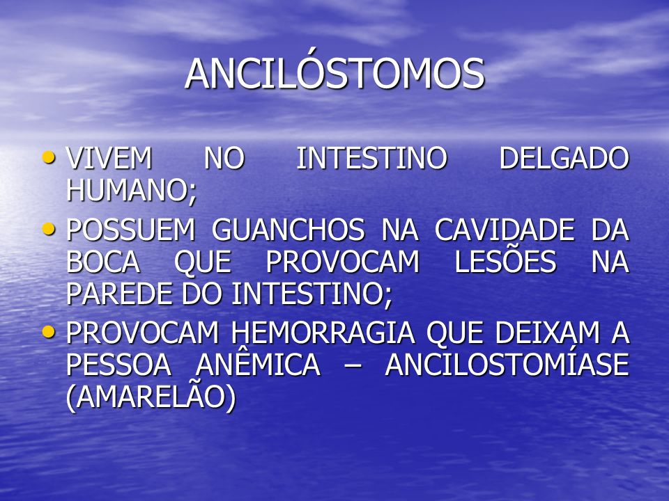 ANCILÓSTOMOS VIVEM NO INTESTINO DELGADO HUMANO;