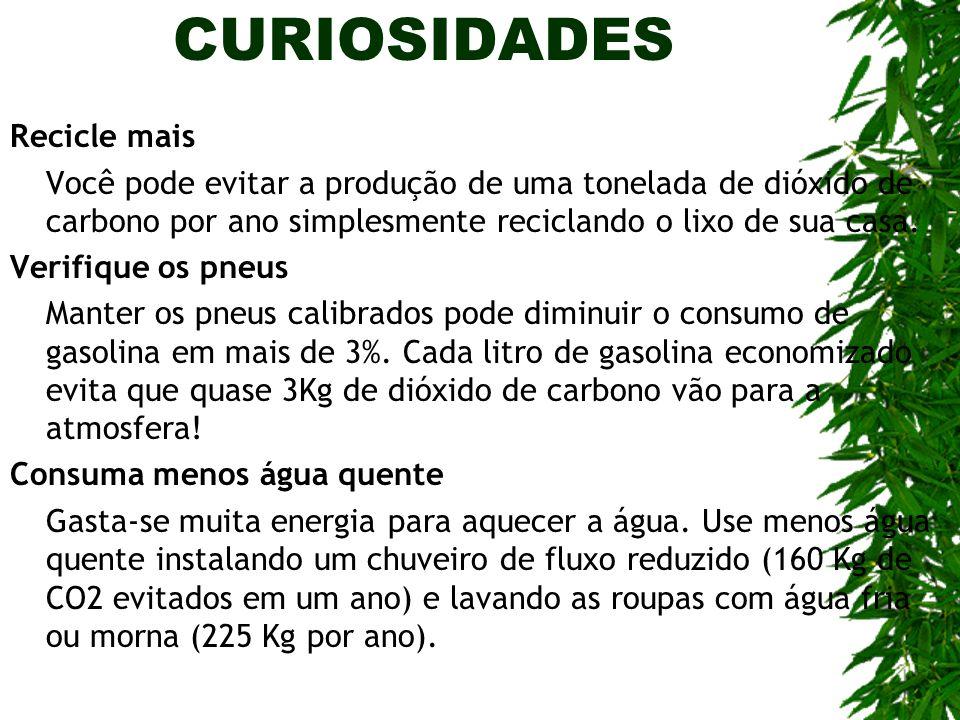 CURIOSIDADES Recicle mais