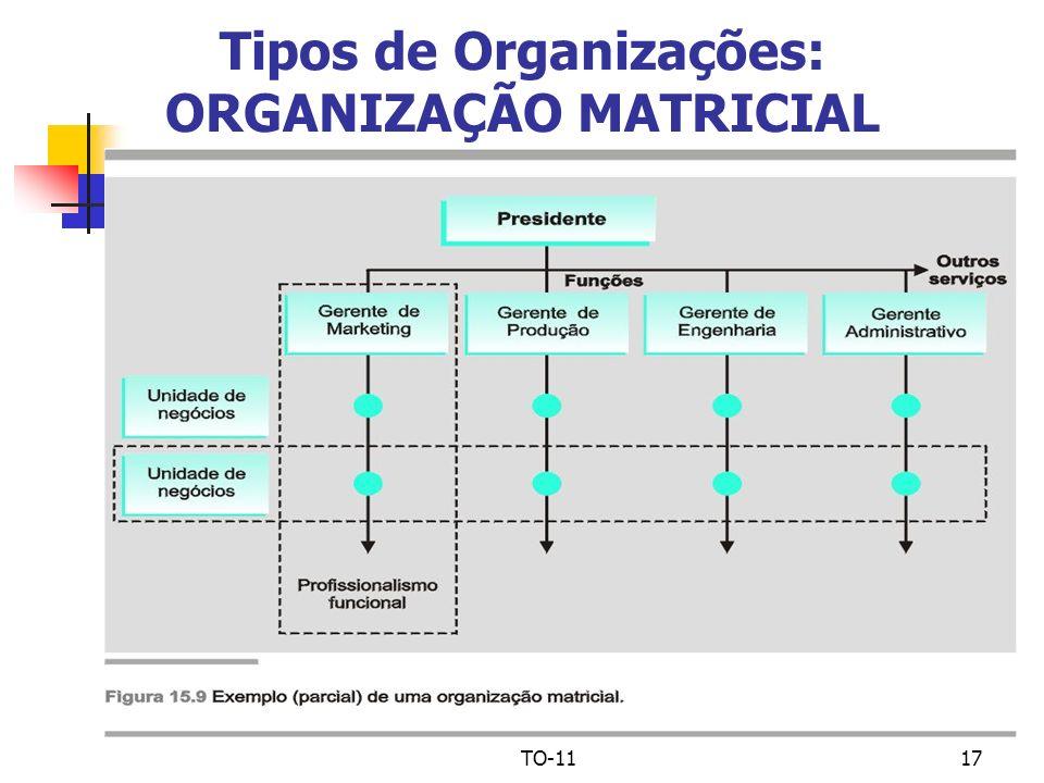 Tipos de Organizações: ORGANIZAÇÃO MATRICIAL
