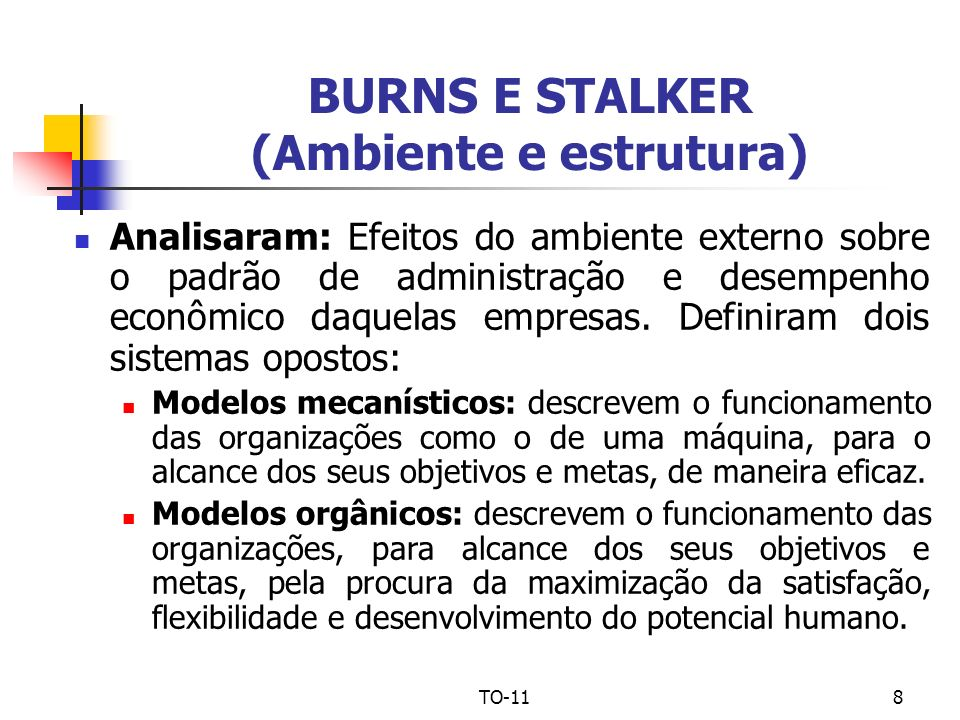 BURNS E STALKER (Ambiente e estrutura)