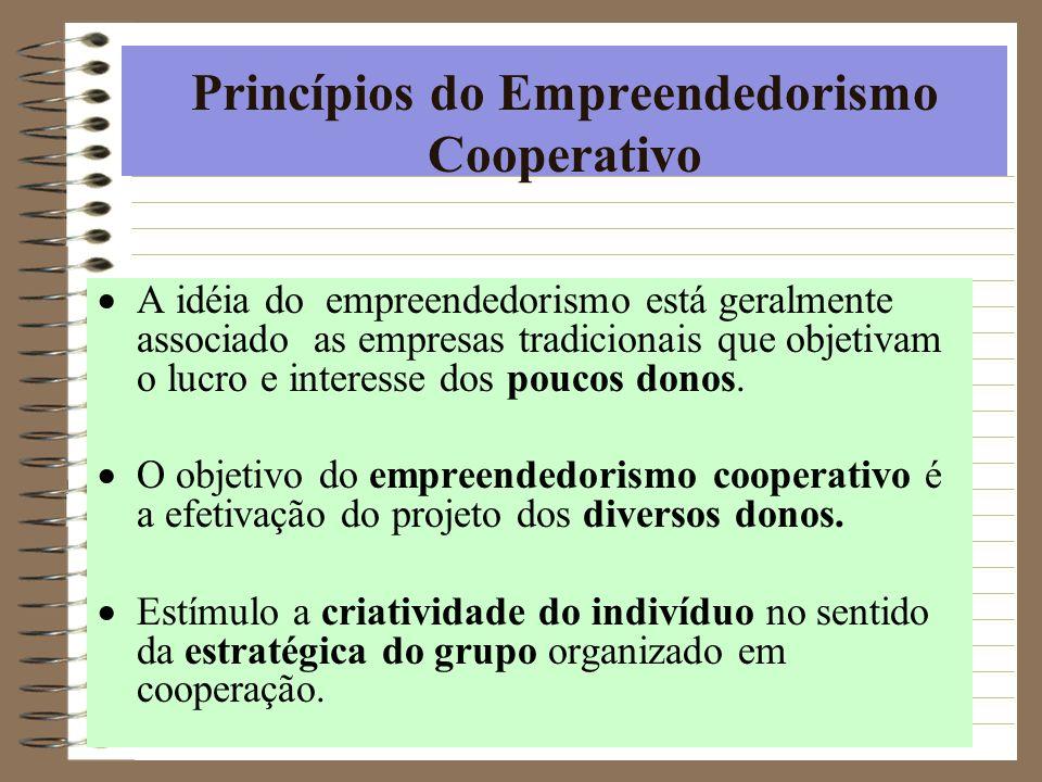 Princípios do Empreendedorismo Cooperativo