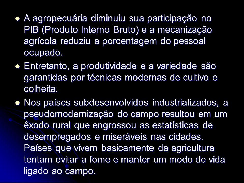 A agropecuária diminuiu sua participação no PIB (Produto Interno Bruto) e a mecanização agrícola reduziu a porcentagem do pessoal ocupado.