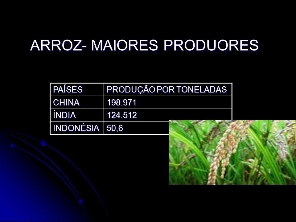 ARROZ- MAIORES PRODUORES