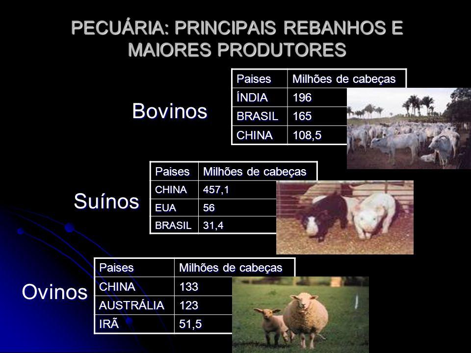PECUÁRIA: PRINCIPAIS REBANHOS E MAIORES PRODUTORES