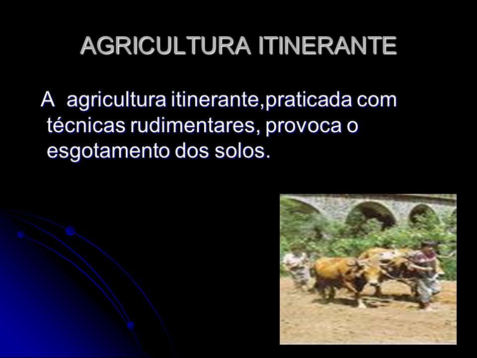 AGRICULTURA ITINERANTE
