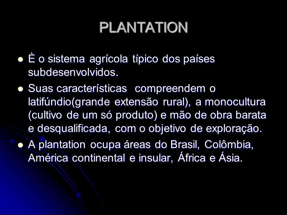 PLANTATION È o sistema agrícola típico dos países subdesenvolvidos.