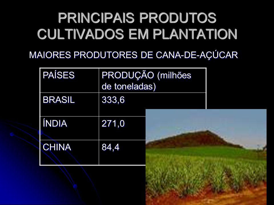 PRINCIPAIS PRODUTOS CULTIVADOS EM PLANTATION