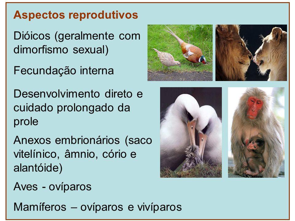 Aspectos reprodutivos