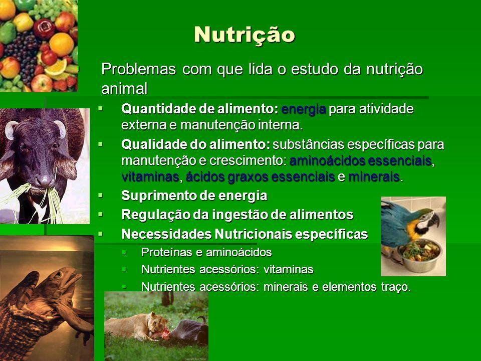 Nutrição Problemas com que lida o estudo da nutrição animal