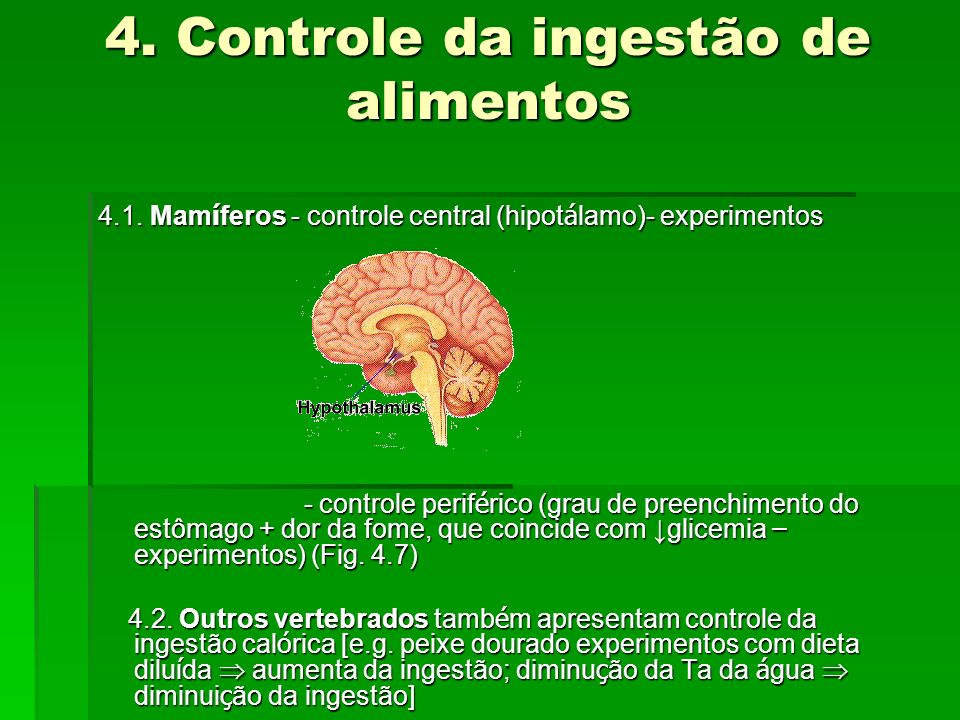 4. Controle da ingestão de alimentos