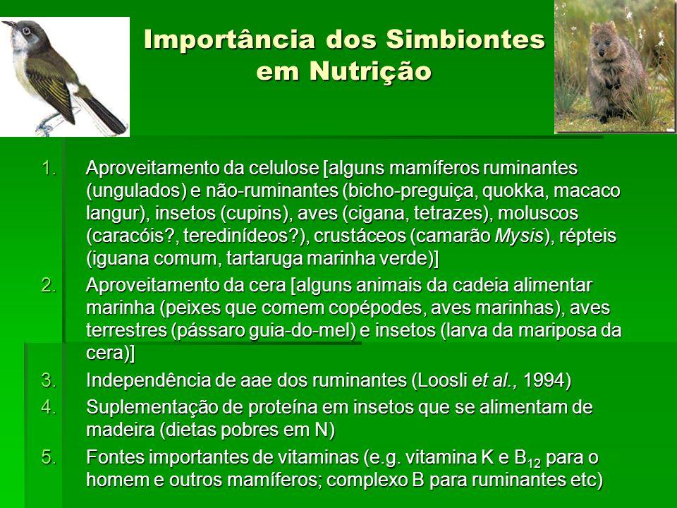 Importância dos Simbiontes em Nutrição