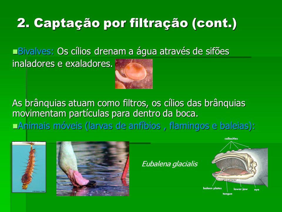 2. Captação por filtração (cont.)