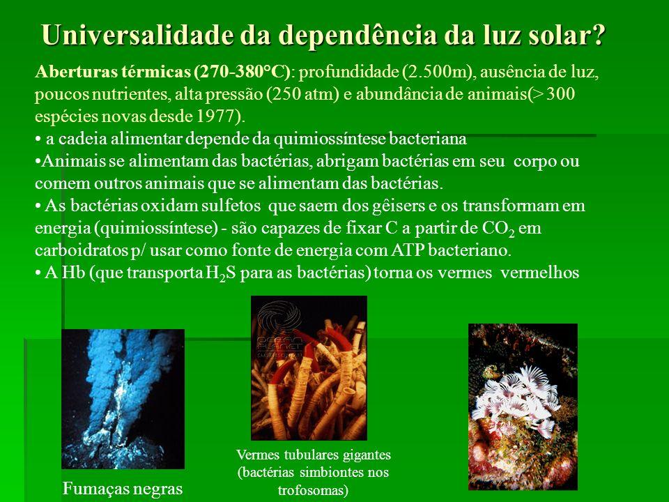 Universalidade da dependência da luz solar