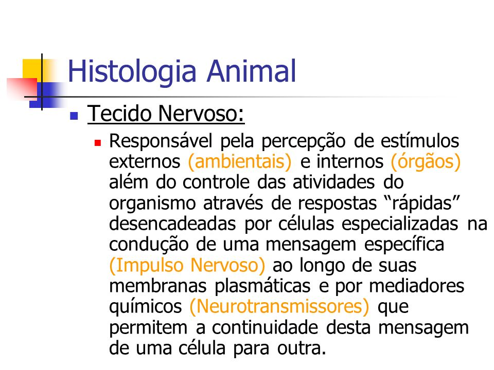 Histologia Animal Tecido Nervoso: